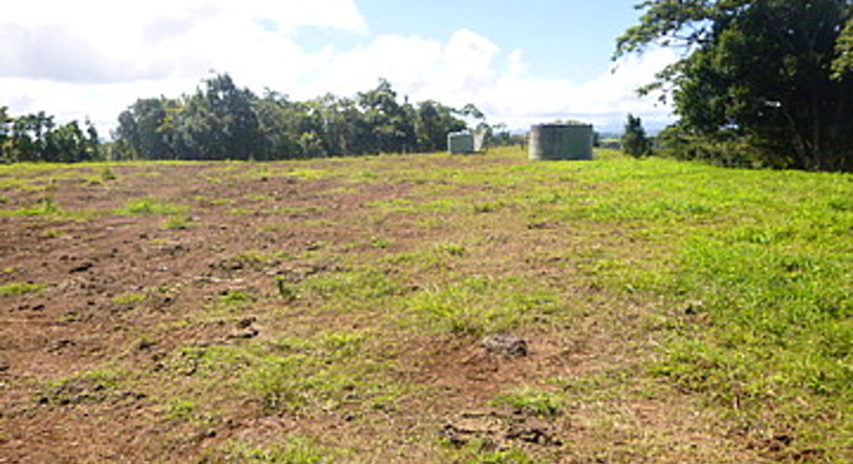 Malanda, QLD, 4885 - Image 13