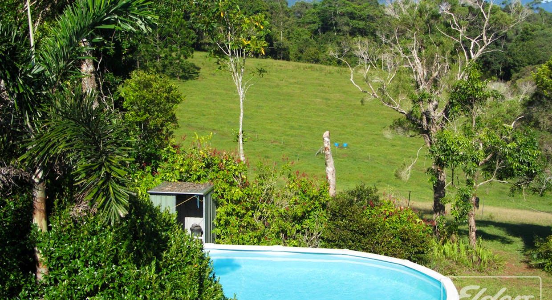 218 Old Boonjie Rd, Malanda, QLD, 4885 - Image 16