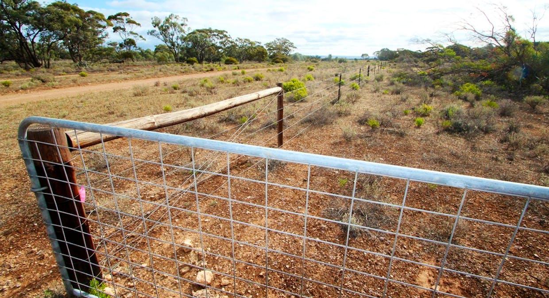 Lot 2 Lake Short Road, Sandleton, SA, 5356 - Image 10