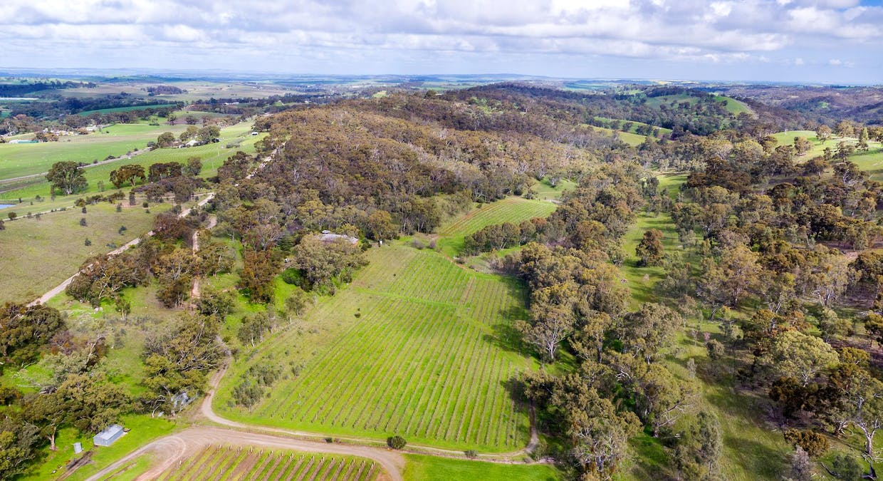 213 Sollys Hill Road, Watervale, SA, 5452 - Image 4
