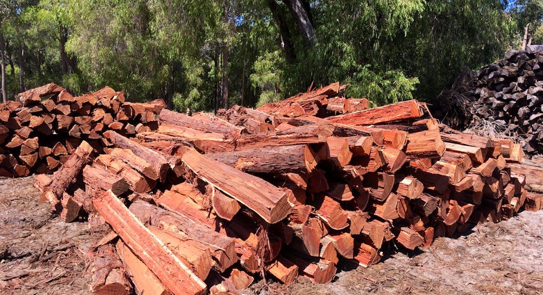 1 Rays Firewood And Logging, Argyle, WA, 6239 - Image 16
